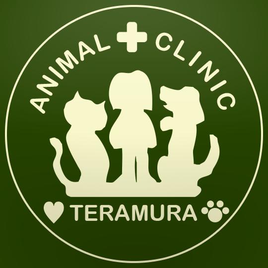 山形 動物病院 動物 犬 猫 診療 てらむら動物病院